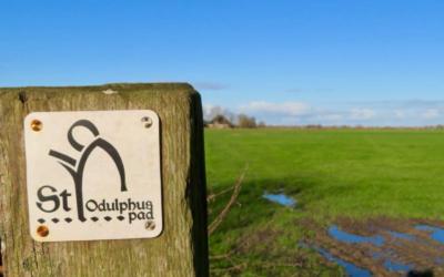 Camino St. Odulphus