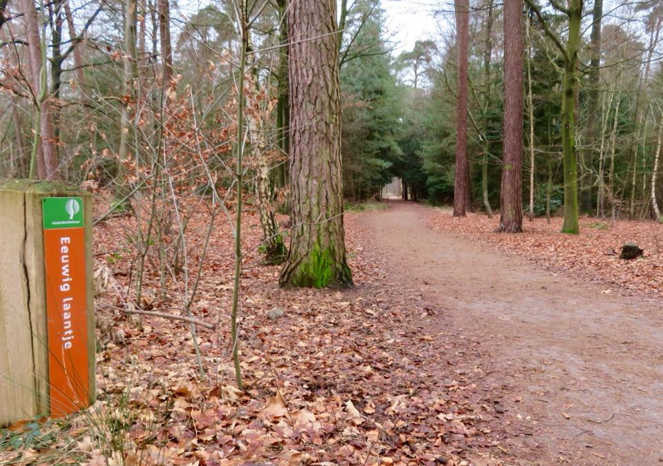 NS-wandeling of Pelgrimsroute?