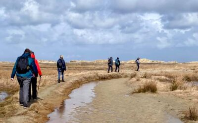 Pelgrimeren in Groningen en op Schier